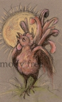 rooster-sun